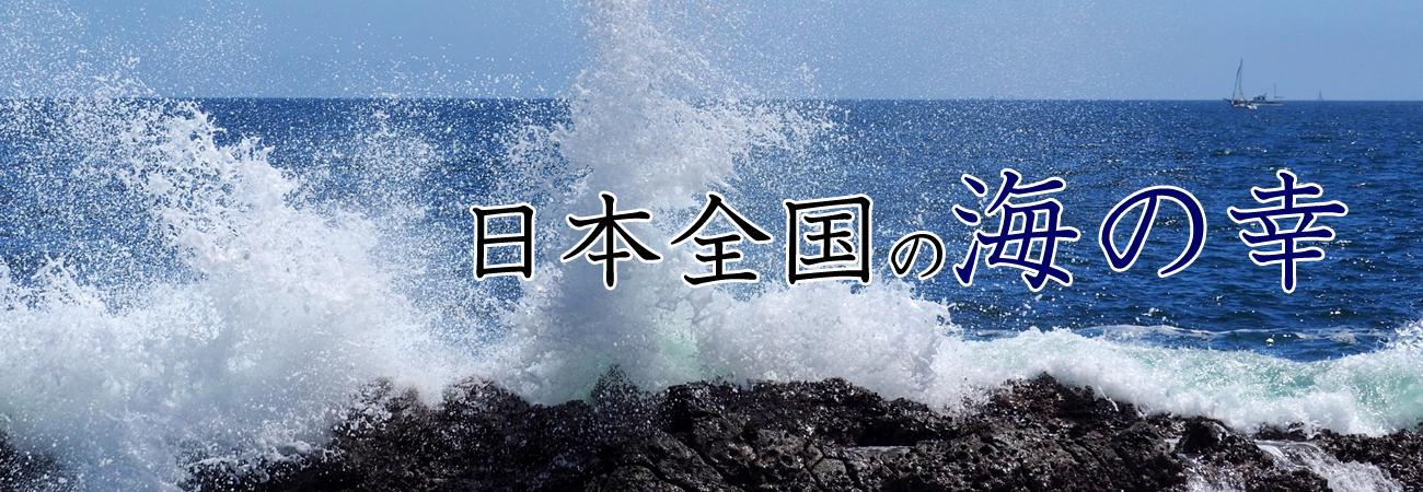 日本全国の海の幸