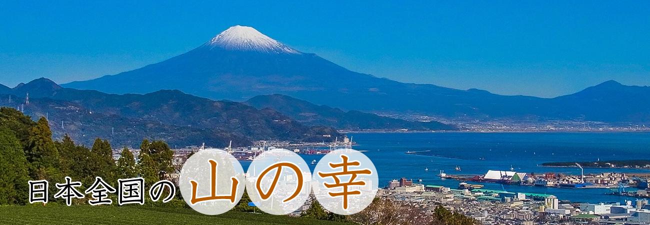 日本全国の山の幸